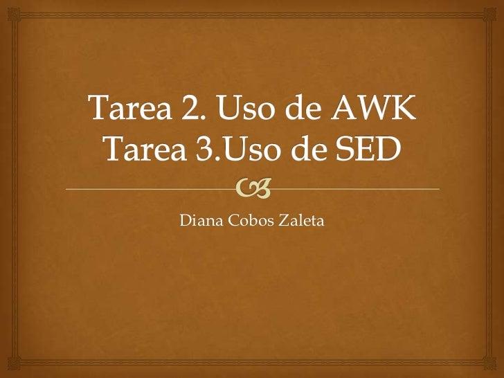 Diana Cobos Zaleta