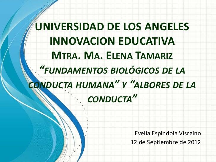 """UNIVERSIDAD DE LOS ANGELES    INNOVACION EDUCATIVA     MTRA. MA. ELENA TAMARIZ  """"FUNDAMENTOS BIOLÓGICOS DE LACONDUCTA HUMA..."""