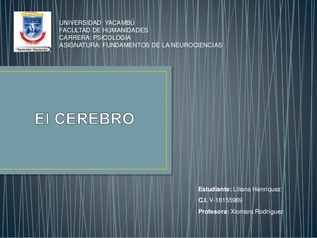 UNIVERSIDAD YACAMBÚ FACULTAD DE HUMANIDADES CARRERA: PSICOLOGIA ASIGNATURA: FUNDAMENTOS DE LA NEUROCIENCIAS Estudiante: Li...
