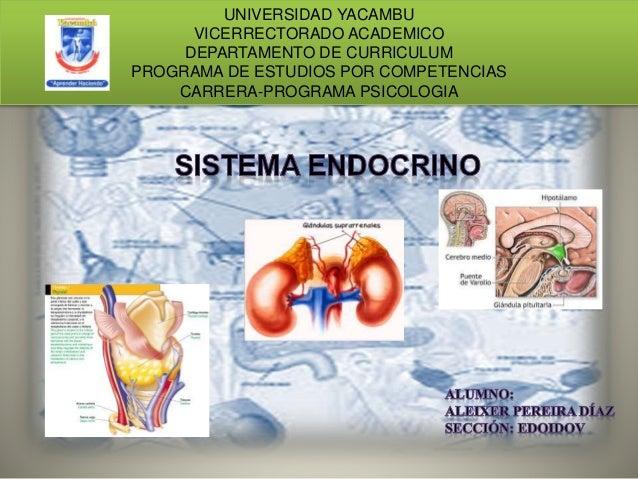 UNIVERSIDAD YACAMBU VICERRECTORADO ACADEMICO DEPARTAMENTO DE CURRICULUM PROGRAMA DE ESTUDIOS POR COMPETENCIAS CARRERA-PROG...