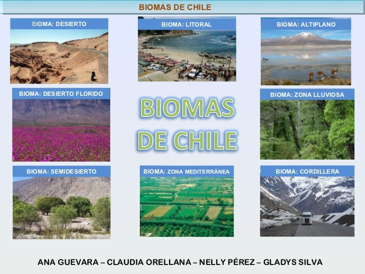 BIOMAS DE CHILE ANA GUEVARA – CLAUDIA ORELLANA – NELLY PÉREZ – GLADYS SILVA  BIOMA: SEMIDESIERTO BIOMA: DESIERTO FLORIDO...