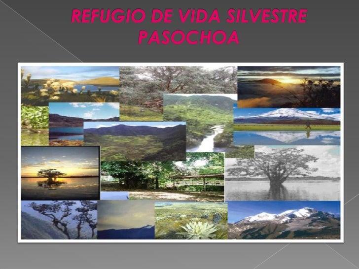REFUGIO DE VIDA SILVESTRE PASOCHOA<br />