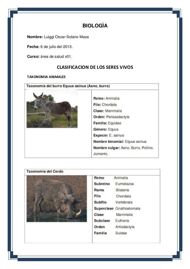 BIOLOGÌA Nombre: Luiggi Oscar Solano Maza Fecha: 6 de julio del 2013. Curso: área de salud v01. CLASIFICACION DE LOS SERES...