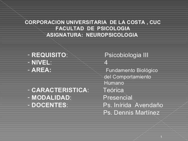 CORPORACION UNIVERSITARIA  DE LA COSTA , CUC FACULTAD  DE  PSICOLOGIA ASIGNATURA:  NEUROPSICOLOGIA  <ul><li>REQUISITO :  P...