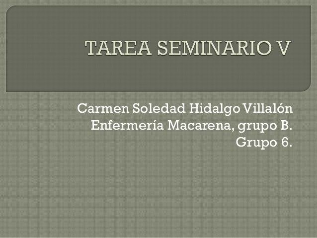 Carmen Soledad Hidalgo Villalón Enfermería Macarena, grupo B. Grupo 6.
