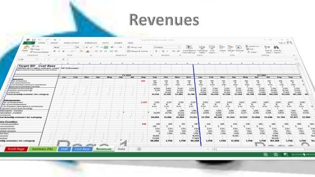 Target Business Development budget sample