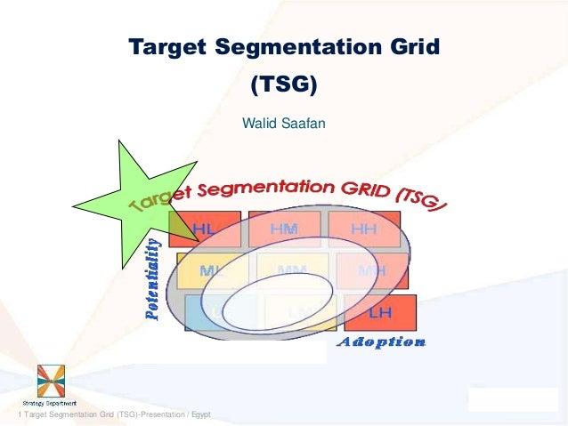 Target Segmentation Grid                                                         (TSG)                                    ...