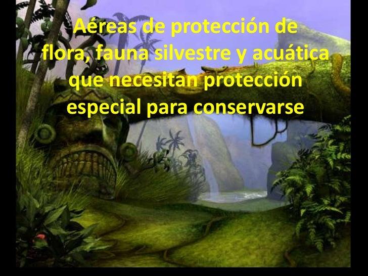 Aéreas de protección de flora, fauna silvestre y acuática que necesitan protección especial para conservarse<br />