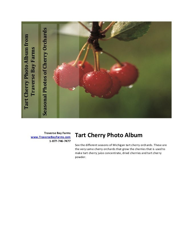 Tart Cherry Photo Album of Cherry Orchards