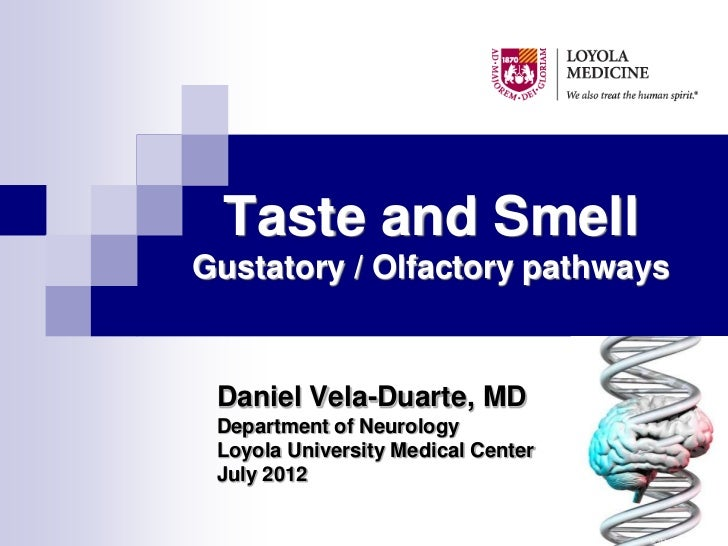 """Taste and smell."""" Gustatory and Olfactory Pathways"""