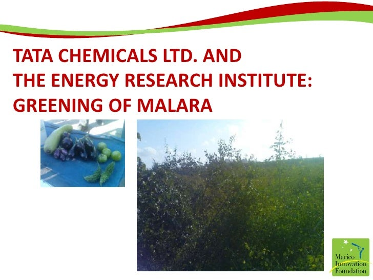 Tata Chemicals Ltd. and The Energy Research Institute: Greening of Malara<br />