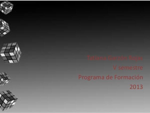 Tatiana Garzón Rojas V semestre Programa de Formación 2013