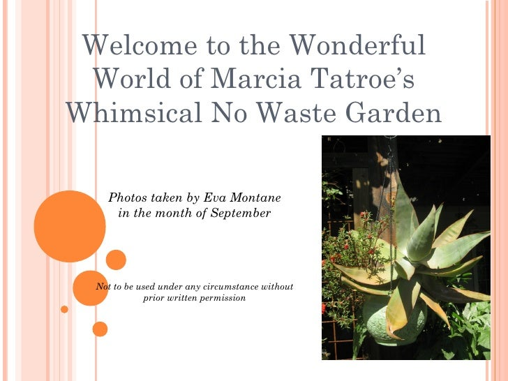 Welcome to the Wonderful World of Marcia Tatroe'sWhimsical No Waste Garden    Photos taken by Eva Montane     in the month...
