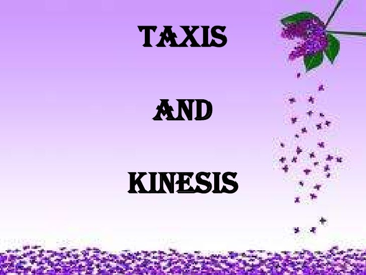 Taxis and  kkinesis