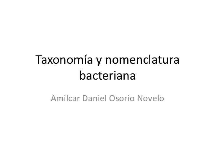 Taxonomía y nomenclatura bacteriana<br />Amilcar Daniel Osorio Novelo<br />