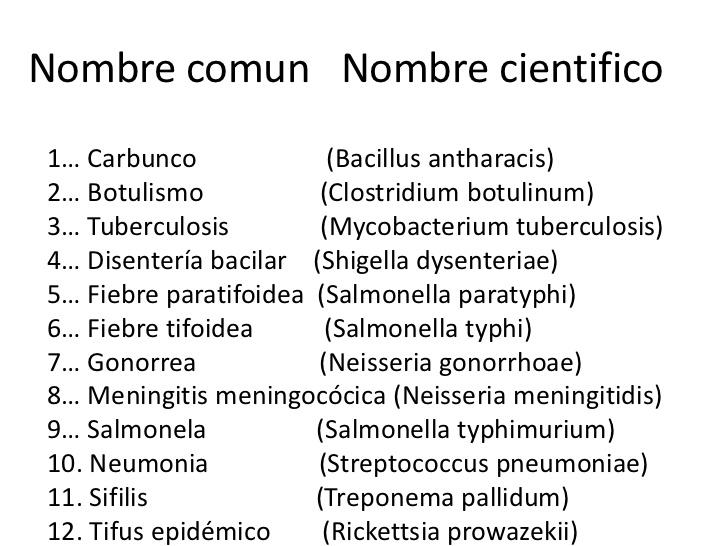 taxonoma-y-nomenclatura- ...