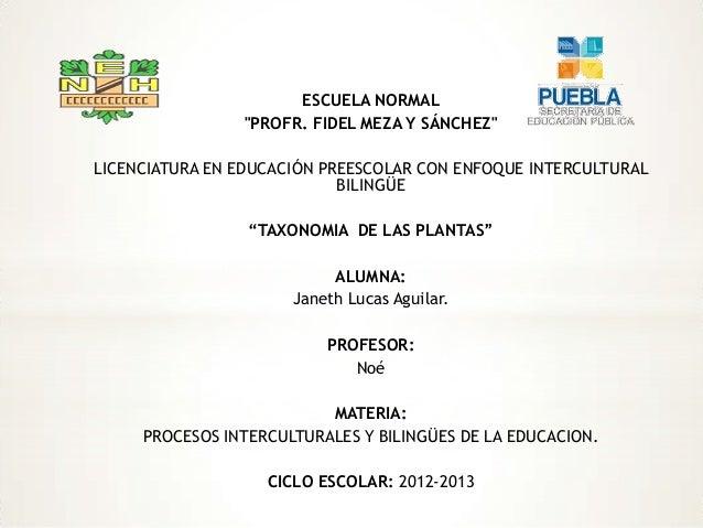 """ESCUELA NORMAL """"PROFR. FIDEL MEZA Y SÁNCHEZ"""" LICENCIATURA EN EDUCACIÓN PREESCOLAR CON ENFOQUE INTERCULTURAL BILINGÜE """"TAXO..."""