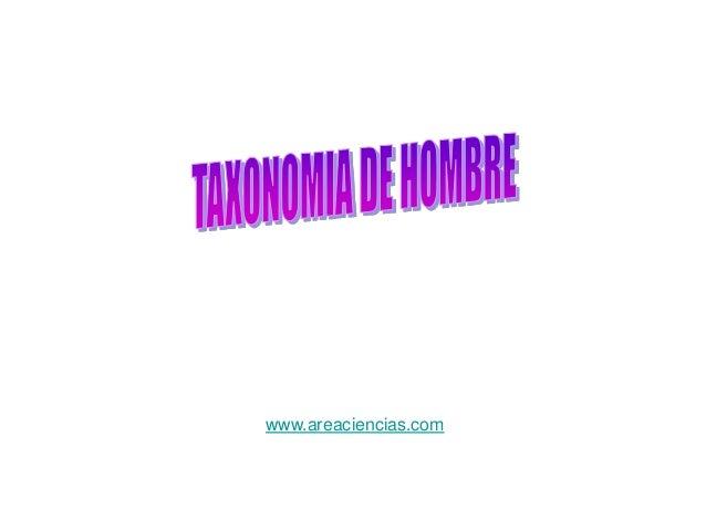 Taxonomia del hombre for Taxonomia de la jirafa