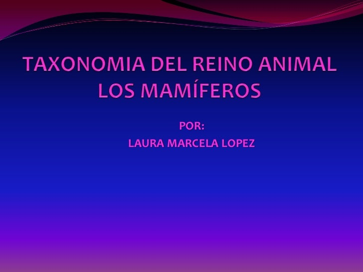POR:LAURA MARCELA LOPEZ