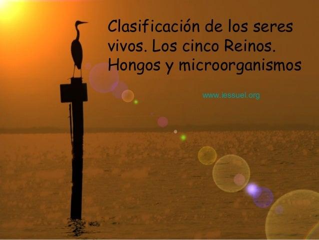 Clasificación de los seresvivos. Los cinco Reinos.Hongos y microorganismos            www.iessuel.org