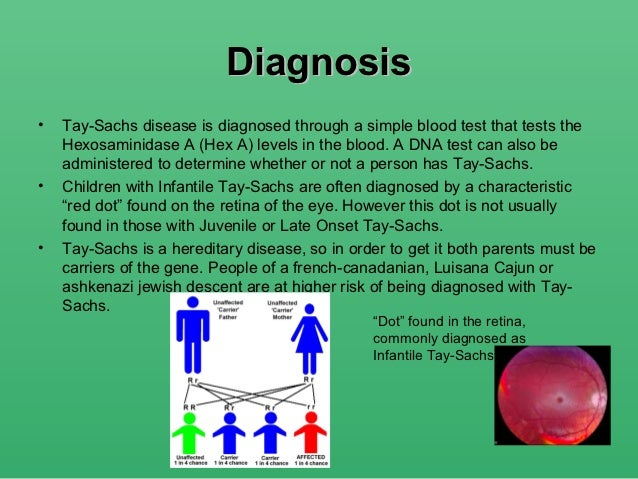 an analysis of the tay sachs disease The tay-sachs disease is a pathology of genetic inheritance that affects the central nervous system also known as gangliosidosis gm2.