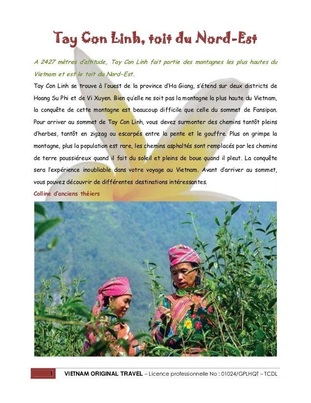 Tay Con Linh, toit du Nord-Est A 2427 mètres d'altitude, Tay Con Linh fait partie des montagnes les plus hautes du Vietnam...