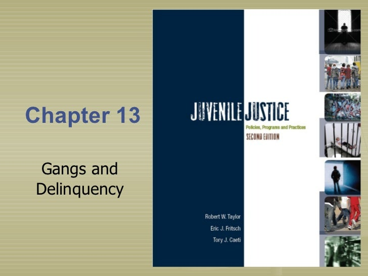 Chapter 13 Gangs and Delinquency