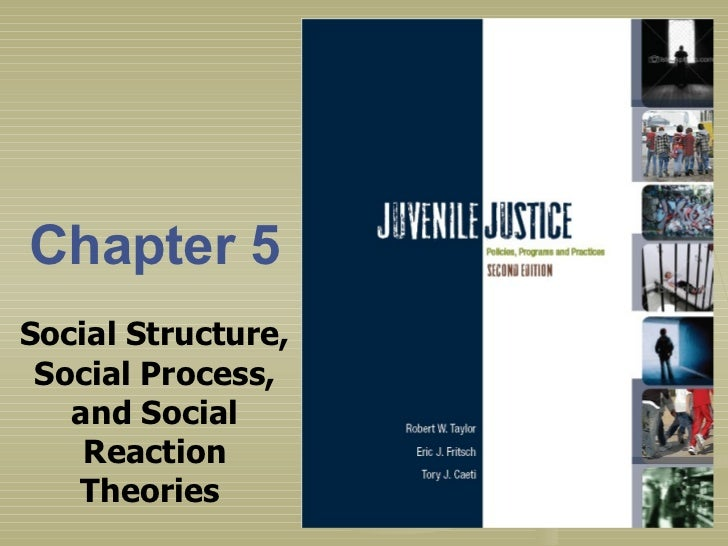 Chapter 5 Social Structure, Social Process, and Social Reaction Theories