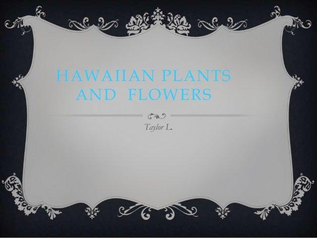 HAWAIIAN PLANTS AND FLOWERS       Taylor L.