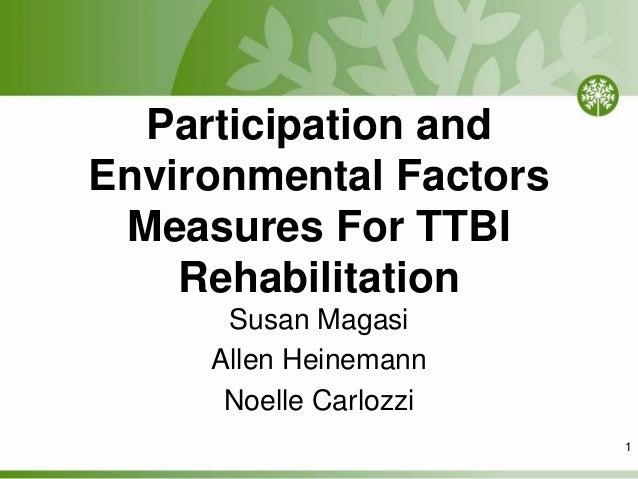 Participation and Environmental Factors Measures For TTBI Rehabilitation Susan Magasi Allen Heinemann Noelle Carlozzi 1