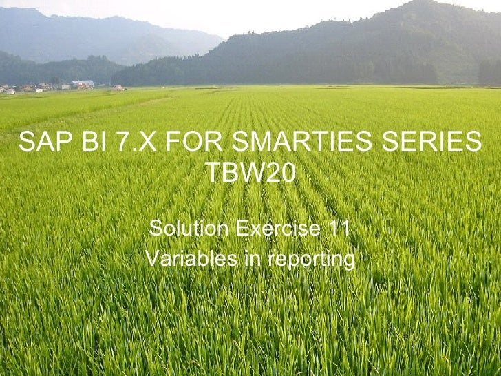 SAP BI 7.X FOR SMARTIES SERIES TBW20 Solution Exercise 11 Variables in reporting