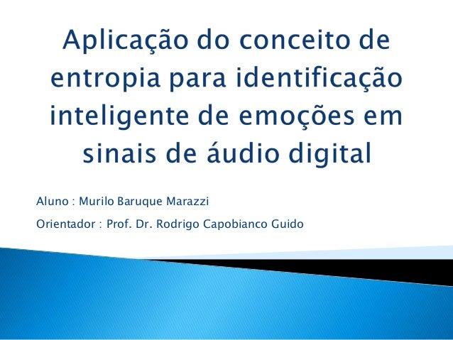 Aluno : Murilo Baruque MarazziOrientador : Prof. Dr. Rodrigo Capobianco Guido