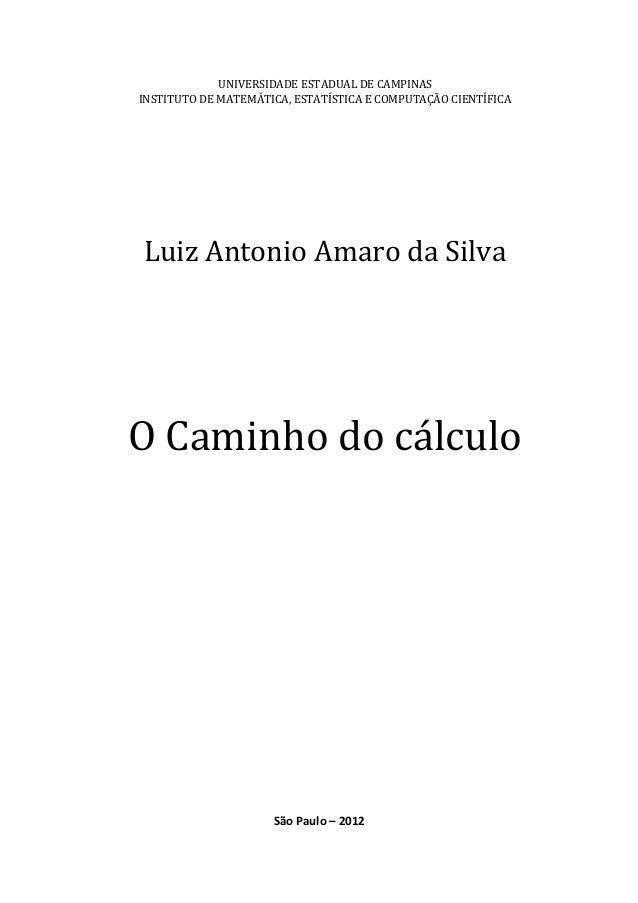 UNIVERSIDADE ESTADUAL DE CAMPINAS INSTITUTO DE MATEMÁTICA, ESTATÍSTICA E COMPUTAÇÃO CIENTÍFICA Luiz Antonio Amaro da Silva...