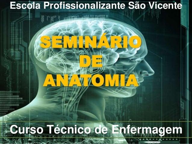Escola Profissionalizante São Vicente SEMINÁRIO DE ANATOMIA Curso Técnico de Enfermagem