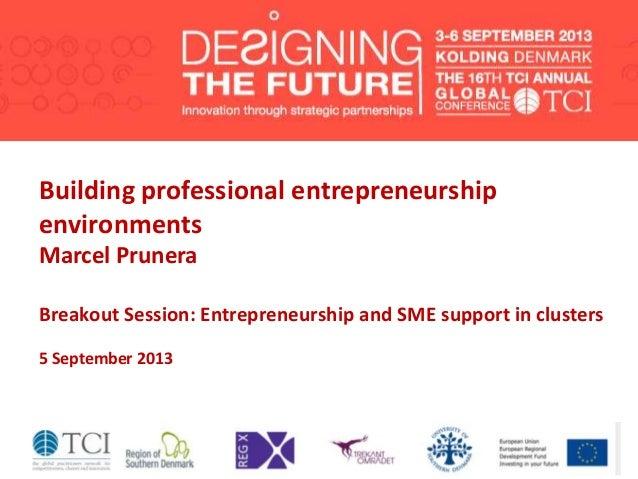 Building professional entrepreneurship environments Marcel Prunera Breakout Session: Entrepreneurship and SME support in c...