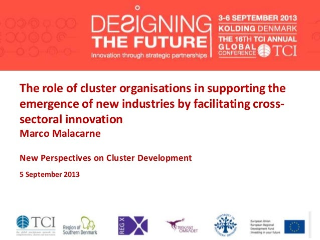 The role of cluster organisations in supporting the emergence of new industries by facilitating cross- sectoral innovation...