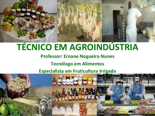 TÉCNICO EM AGROINDÚSTRIA     Professor: Ernane Nogueira Nunes         Tecnólogo em Alimentos    Especialista em Fruticultu...