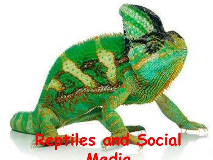 Reptiles and Social Media<br />