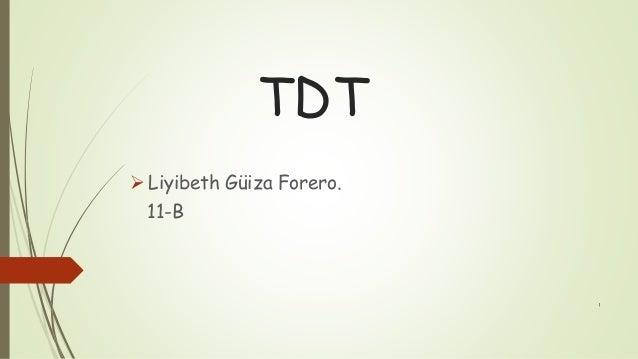 TDT  Liyibeth Güiza Forero. 11-B