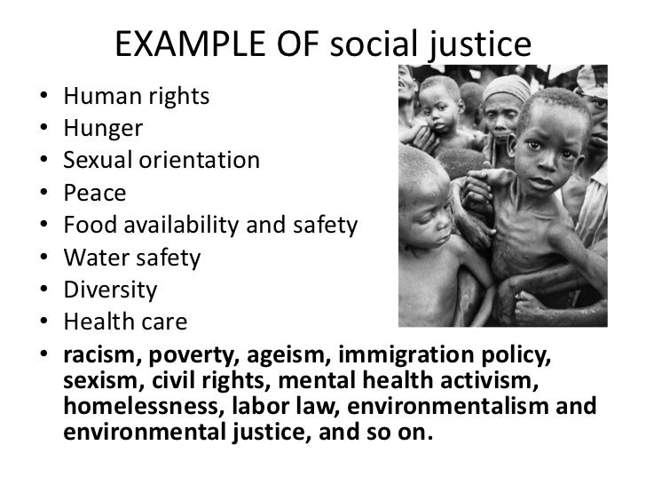 Teaching social studiessocial justice and service learning