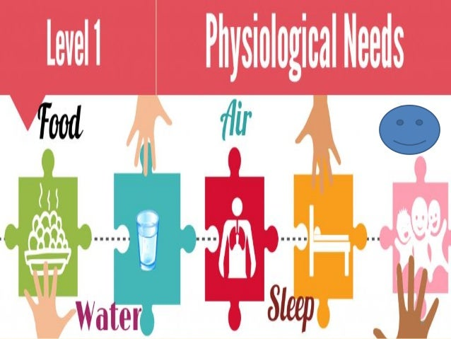 the physiological needs We all share simple requirements for sustaining life and health our physiological needs are the minimal requirements of survival these physiological needs include.