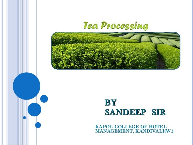 Tea Making Process