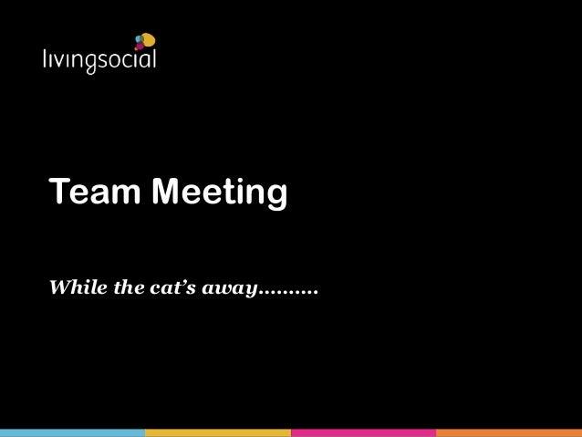 Team MeetingWhile the cat's away……….