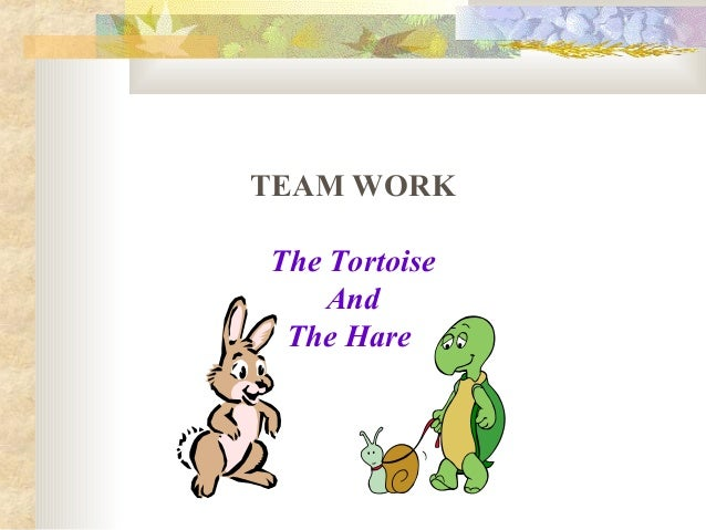 TEAM WORK The Tortoise And The Hare