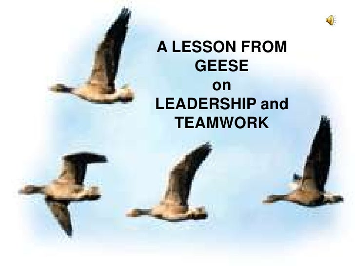 A LESSON FROM GEESEonLEADERSHIP andTEAMWORK<br />