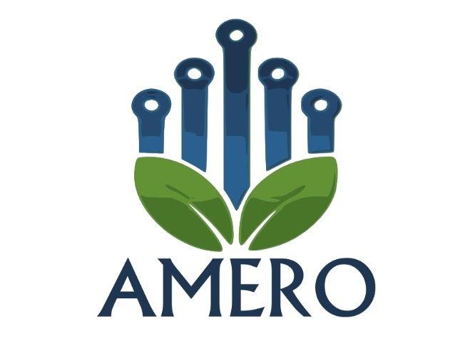 O que é a Amero? • É uma startup curitibana com o objetivo de aproximar compradores de vendedores de produtos orgânicos. •...