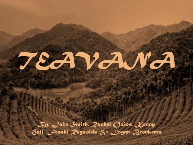 Corporate Brand Audit: Teavana