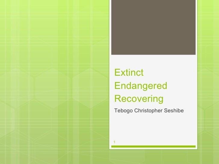 Extinct Endangered Recovering <ul><li>Tebogo Christopher Seshibe </li></ul>