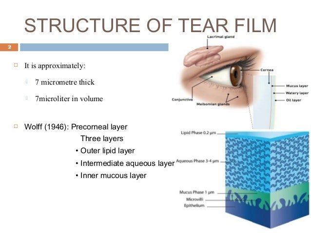 Techniques of tear film evaluation by Raju Kaiti