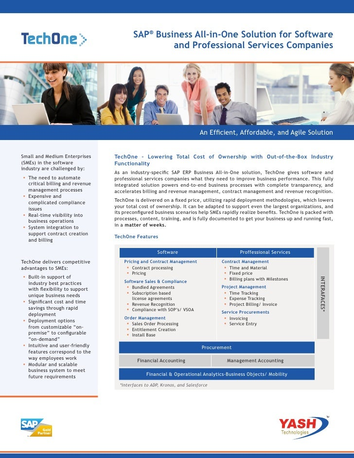 TechOne:  Business All-in-One Solution for Software and Professional Services Companies